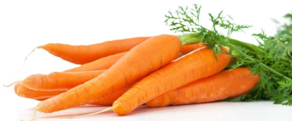 właściwości marchewki