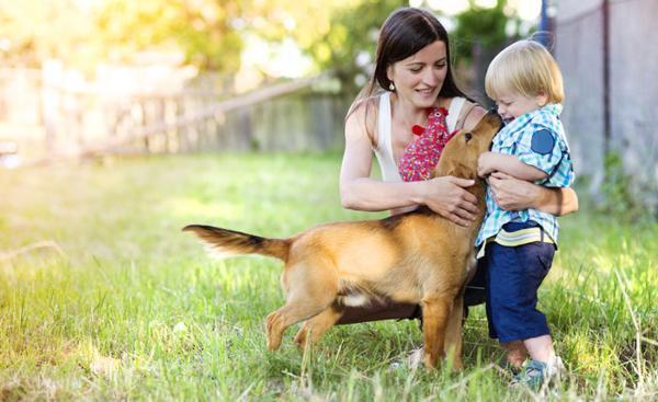 jak wybrać zwierzę dla dziecka